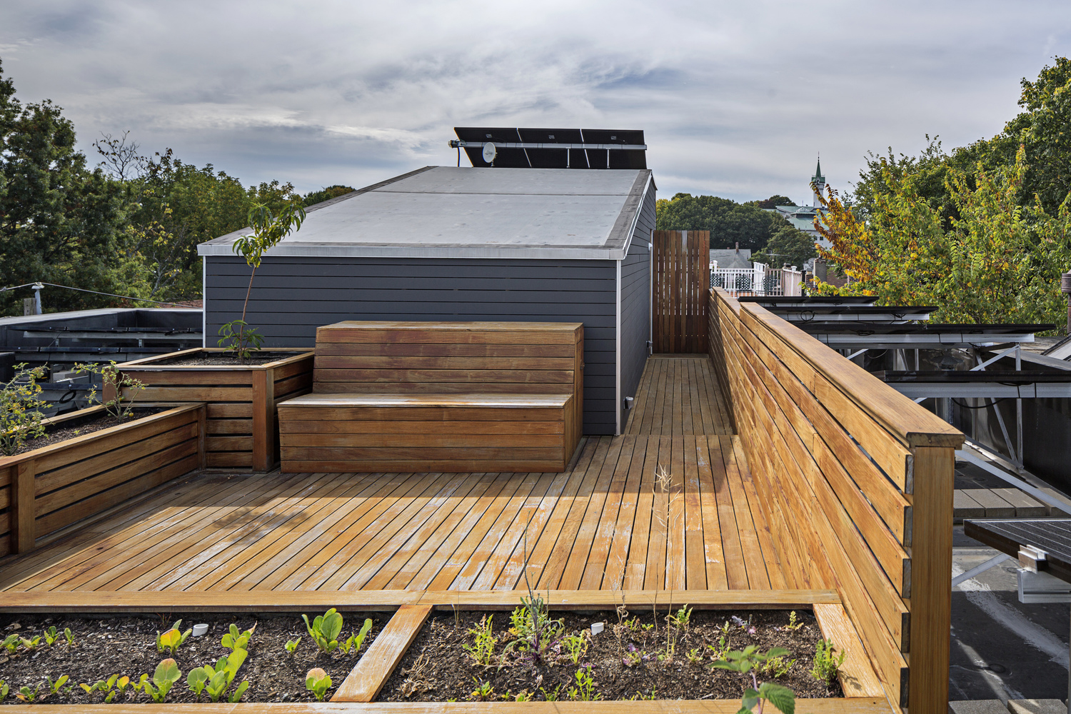 Roof top garden of Boston's first passive house – designed, developed and built by Placetailor.